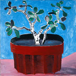 David Hockney / Potted Jade 1988