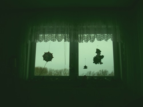 My grandma's living room window. (01/03/10)