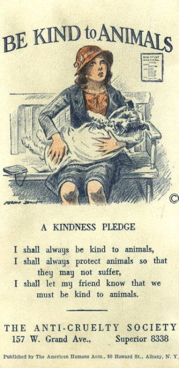 Adorable, right? The American Humane Association was founded in 1877; this ad is from the 1920s. (via fuckyeah1920s)