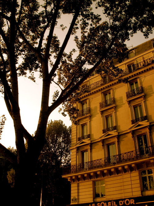Latin Quarter, Paris, France By lavenderdays.