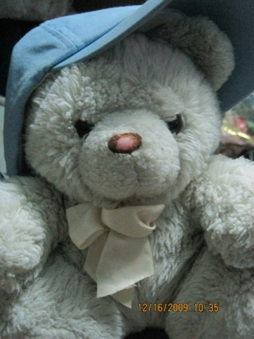 ..mah 9-year old teddy..