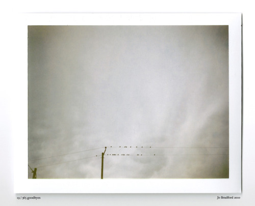 Day 19.  Storm brewing Cornwall, UK. Polaroid Land Camera 240 and 125i film (expired 12/2007). Polaroid photograph, all rights reserved, copyright Jo Bradford 2010
