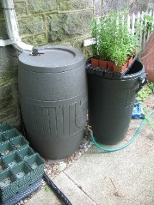 Rain barrel and downspout