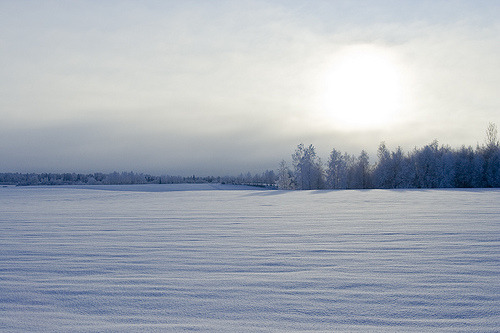 Winter Scenery (via ToveM)