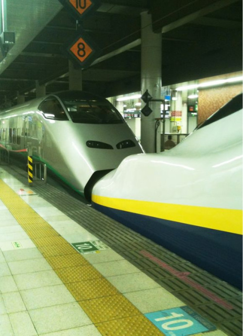 Some Shinkansen love. Wednesday, jumped on the bullet train and headed west to Hakuba in the Japanese Alps outside Nagano.