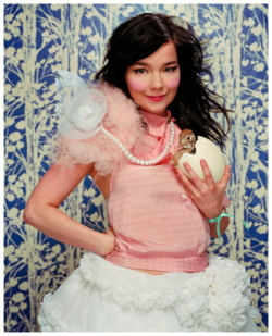 lollaloves:  Bjork