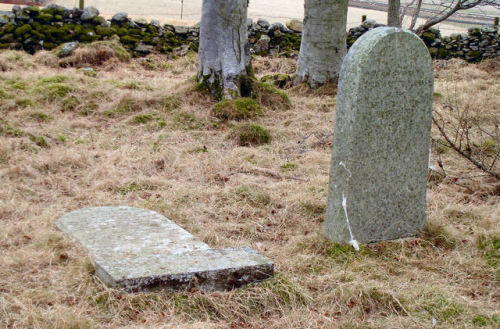 "Forbes Gravestones at the Terry Chapel Ruins Having made his discovery of the ruins, Fatjock then set about trying to find reference to them in literature and came across this account in the New Statistical Account which he believes is a description of what he found: ""Ancient Chapels,— It is stated in the ""View of the Diocese of Aberdeen"" that there was formerly a chapel at Lenturk. There is now no trace of the building; but there is a spot still known as the ""chapel croft,"" a little way south-east from the site of the castle. A small bit of ground, on the farm of Corbanchory, still untouched by the plough, and called the ""Chapel Yard,"" was no doubt attached to another place of worship. The ruins of a third, named ""Terry Chapel,"" on the farm of Newton of Corse, are still distinguishable; and the good taste and feeling of Sir John Forbes, the proprietor, have led him to enclose and plant the spot."" (via Alford Images)"