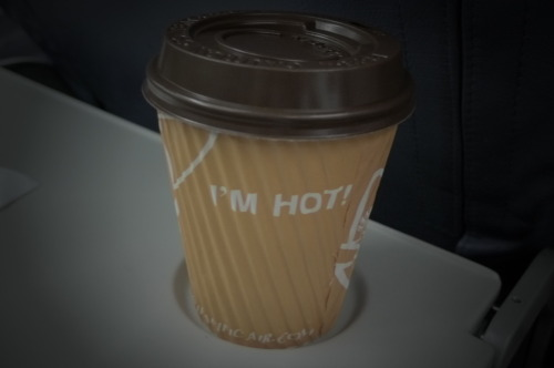 JANUARY 28 - I'M HOT! This is my favorite Cafe Mocha drink that is exclusively available in Cebu Pacific flights for Php 80. Yep, this is the reason why I never got the chance to take a nap in any of my Cebu Pacific flights! :P It's only now that I noticed the statement of the Cafe Mocha cup. Definitely, this is one hot mocha. Too bad I am currently sipping a 3-in-1 hot coffee. Boo.