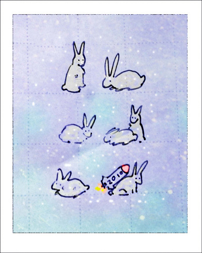 White rabbits (via Mary Jane 2040)