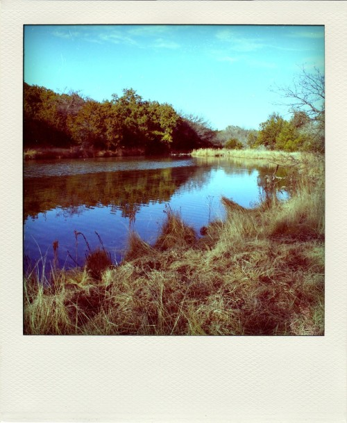 Catterell Ranch, Roosevelt, TX, 2009