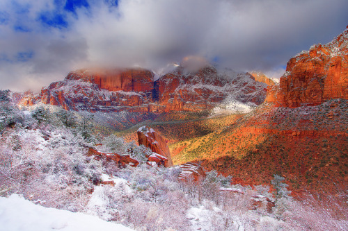Zion National Park With Rare Snow In Winter (via kevin mcneal)