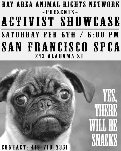 Hey you! The one complaining about how there's no real activism in San Francisco! This is your chance to remedy all that: come to the Activist Showcase! It's on Saturday Feb. 6 from 6 to 9 p.m. at the SF SPCA (243 Alabama St. at 16th Street in the Mission). There will be networking and noshing! There will be sharing, requesting, and inspiring! There will be connecting, collaborating, and creating! SYNERGY! I went last year and it was a great event; you learn about the exciting things other activists are doing and how to get involved. If you have a project that's near and dear to your heart, you can find people here to connect with. The more people who attend, the better it is for everyone, especially the animals. Which is why we're all here, right? Oh, I'm here to bitch about menu changes too, but you know, some real activism never hurt anybody. If you want to speak at the event about something you'd like to get collaborators for, email Josephine and let her know! If not, SEE Y'ALL THERE!