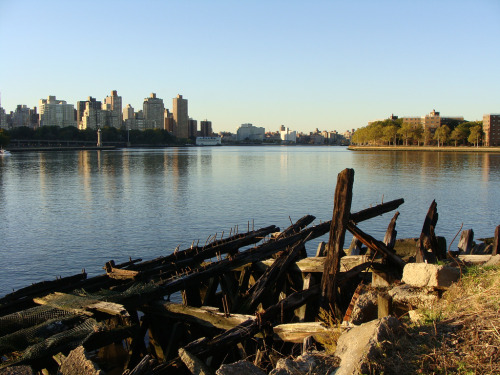 "audrey dimola: waterfront of socrates sculpture park; long island city, queens. AD's inspiration and reason: the inaugural photo of what will become danny and i's epic photo journey for DKADSHOTNY! this was shot from my ""perch"" on the waterfront in socrates sculpture park - an amazing outdoor space for art in the city and a park i grew up visiting and playing in. this spot on the waterfront has since become extremely special to me, as i was able to find some much-needed mental clarity being alone on the water, not only overlooking the city and the wide expanse of the river, but also that amazing ruin which seems like an ancient barge that just crashed on the shore. call me crazy, but i think it's oddly beautiful.. but then again, i DO have a fascination with industrial/abandoned things and remnants of the past!"