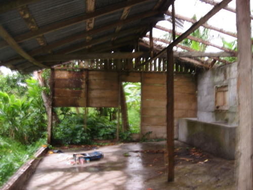 The interior of the same structure. Hurricane Ivan hit Grenada in 2004. 90% of the buildings on the island lost their roofs. By 2008 most had been repaired or rebuilt, but some, like this one, were abandoned. Standing here I was struck by the absolute stillness and silence, as well as the sense that the house was slowly but surely being reclaimed by the wilderness. (large)