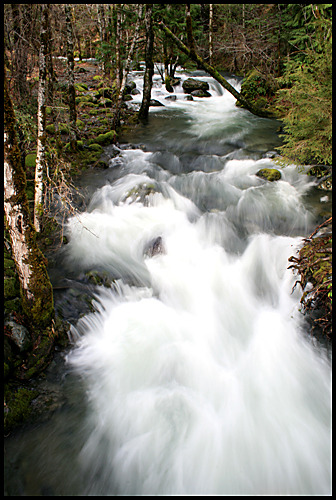 Angel Wings Six Mile Creek Josephine County, Oregon Canon XTi Photography by Harry Snowden If you enjoyed this image, you might also like…  Winter Runoff