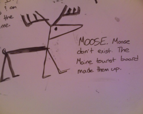 A moose? Really, @AlNotAlly? It's like you aren't even trying anymore.