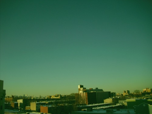 My roof, Brooklyn, 02/12/2010