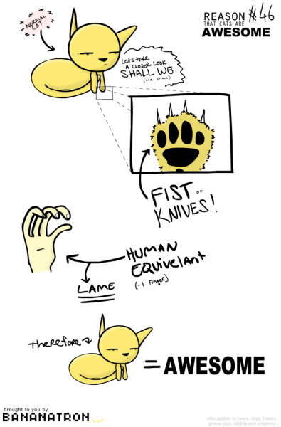 Cats Are AWESOME Illustration/comic