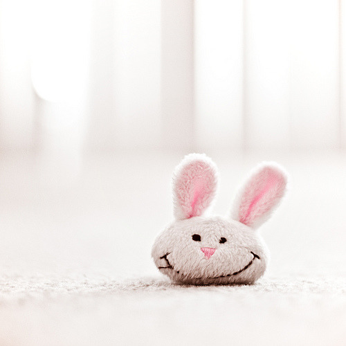 Smiling bunny made my day ^_________^ (via ` ppimm `)