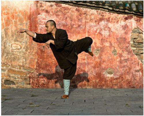 From the Shaolin-series by Justin Guariglia.