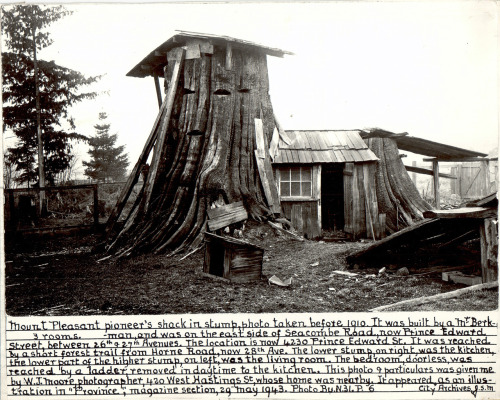 simplesue:  ontheborderland:  'Three-Room Stump Home' of Vancouver, BC, taken before 1910 (via Leedman)