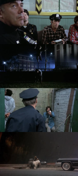 moviesinframes:  Serpico, 1973 (dir. Sidney Lumet) Submitted by doublec  I always think of that It's Always Sunny episode whenever I see Serpico now.