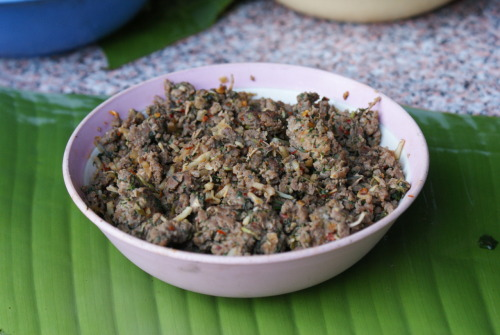 "Spicy Minced Pork (shaqji shaqbyehf) The staple of the Akha diet is dry-planted mountain rice, but there are a number of dishes that are uniquely ""Akha"". A combination of five types of dishes may be served at a traditional formal meal: a fried dish (usually pork or chicken and vegetables), a boiled dish (a soup, sometimes vegetables, sometimes potatoes cooked with stewing bones), a pickled dish (any combination of vegetables which have been preserved through a pickling process), a crushed dish (a salsa created by combining chili peppers, tomatoes, cilantro and other unique ingredients by mortar and pestle), and a raw dish (raw vegetables used to dip in the salsa, and occasionally raw meats). In this image you can see a cooked version of the Akha spicy minced pork. This savory dish is probably the most common celebration dish and is often made in very large batches to feed large groups or entire villages. The pork (or beef) is finely chopped with machetes and cleavers slowly adding 7 or 8 additional flavorings. The meat is then fried and served as pictured or in a light broth. Occasionally this dish is also served raw. Most commonly eaten by the men, the spices are all added and then the meat is eaten as-is or in a small amount of the animals blood. All versions of this dish are eaten over rice."