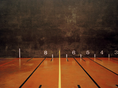 Elliott Wilcox introduces his photography project 'Courts' like this  'This work examines representations of the enclosed spaces of sports  courts. In photographing the empty courts, absent of the fast paced  action we are so familiar with, these environments reveal themselves in a  new light.'