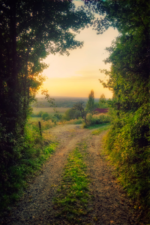 Door To Eden (via Allard One) Captured near L'Oudon, Basse-Normandie, France.