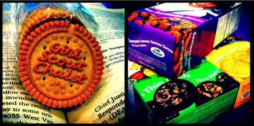 girl scout cookies @ criminal procedure class, lls, los angeles, ca. [memory: addiction.]