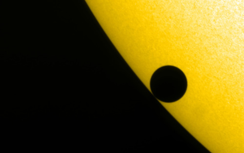 The planet Venus is seen by NASA's TRACE satellite, at the start of its transit across the sun on June 8, 2004. The Big Picture (via monicabionda:gravitazero:rispostesenzadomanda:nihilnoetia) (Is it just me or are you thinking of the Watchmen logo too?)