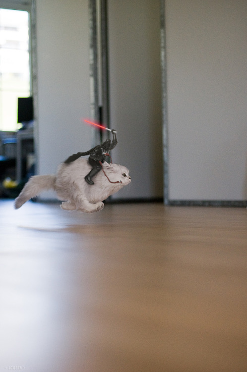 """Darth Vader Riding Cat"" by Joost5 (original lol cat version here)"