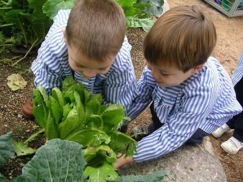 Ecoaldea tecnologia huerto ecol gico una entretenida for Actividades para jardin infantil