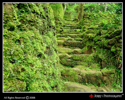 Stairs To The Lap Of Nature (via | JERRY |)