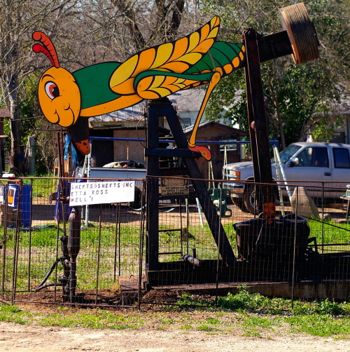 Residential Decorated Pumpjack