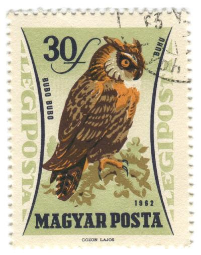 #vintage, #stamps, #illustration, #design, #birds, #owls, #uruguay, #1960s, #gozon_lajos