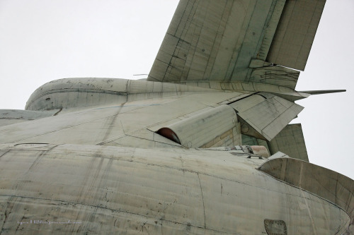 Tail section of the magnificent Soviet Ekranoplan Lun, now rotting away here. More photos here, seen on BoingBoing. Lovely shades of grey, like something out of an alien landscape.