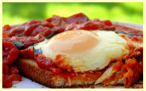 aperfectspread:  germancitygirl:  These are eggs baked with marinara + garlic + pancetta + fresh basil + Parmesan served over a slice of crusty bread.  I want to make these over the weekend… Recipe available at Noble Pig.