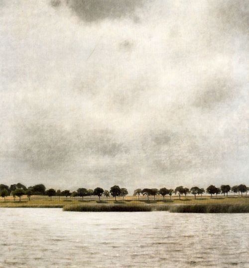 crashinglybeautiful:  sealmaiden:  Vilhelm Hammershøi Gentoftersee 1903