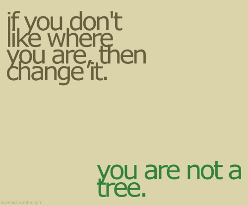 nouf90:  if you don't like where you are,then change it .. you are not a tree :) busyhaifa:     (via artpixie)