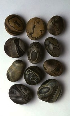 leslieavonmiller:  fullbloom:  Cabinet of Curiosities: Rocks…