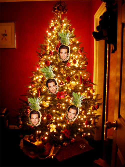 CHRIStmas PINEapple tree! This is a quality blog.