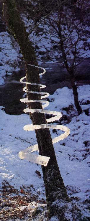 Andy Goldsworthy - Spiral (1995)