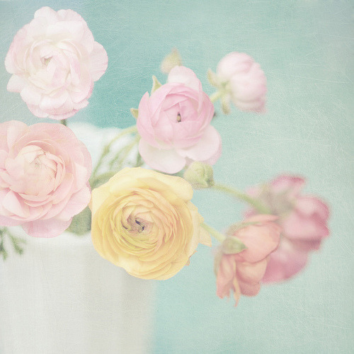 ohhelloyouprettythings:  Daydream (2/4) (via Shana Rae {Florabella Collection})