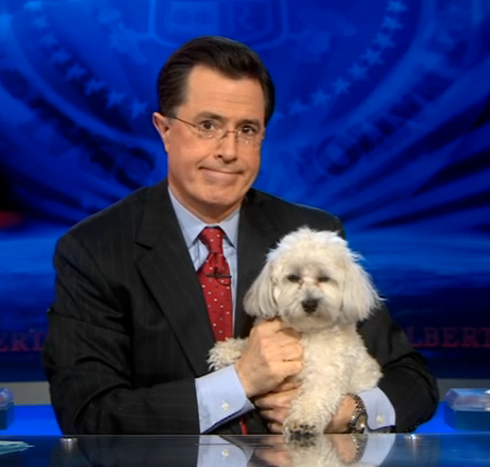 dog spy with stephen colbert