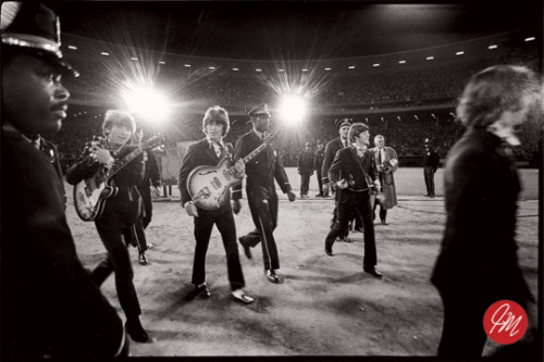 "fuckyeahthebeatles:   ""The Beatles coming onto the stage of their last concert ever. I was the only photographer allowed backstage. When we arrived at the stadium, the band was in an armored car, and I was in another car following, and the old fart groundskeeper at the center field gate wouldn't let us in - he didn't know what was going on! So we had to drive around this pretty hardcore ghetto, Hunter's Point, while things got straightened out, and we finally got in about 20-minutes later.""  – Jim Marshall, legendary musical photographer who died yesterday at age 75 (Photo via Marshall Photo)  remembermeas:thepoliticalpartygirl:  My dad was there, at this concert."