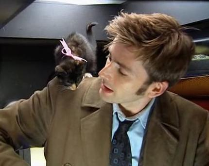 David Tennant and the luckiest cat in the world!