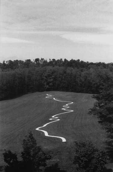 hapticblog:  Richard Long: River Po Line.