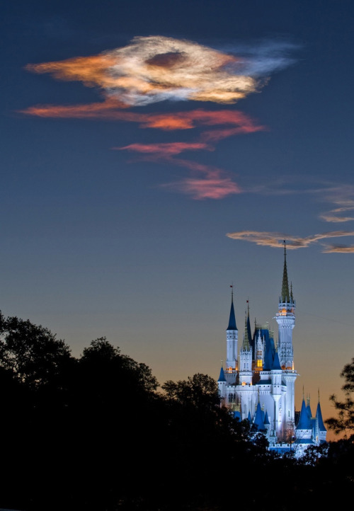 *gasp* laurenathena:  Discovery exhaust trail over the Cinderella Castle, Florida. It's so pretty! There is another picture of the actual shuttle in the sky over the castle on the page. Great timing by the photographer. Disney + sunrise + spacey shizz = brilliant. (Source)