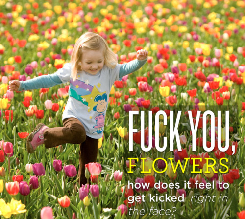 thebigcaption:  Fuck You, Flowers. original